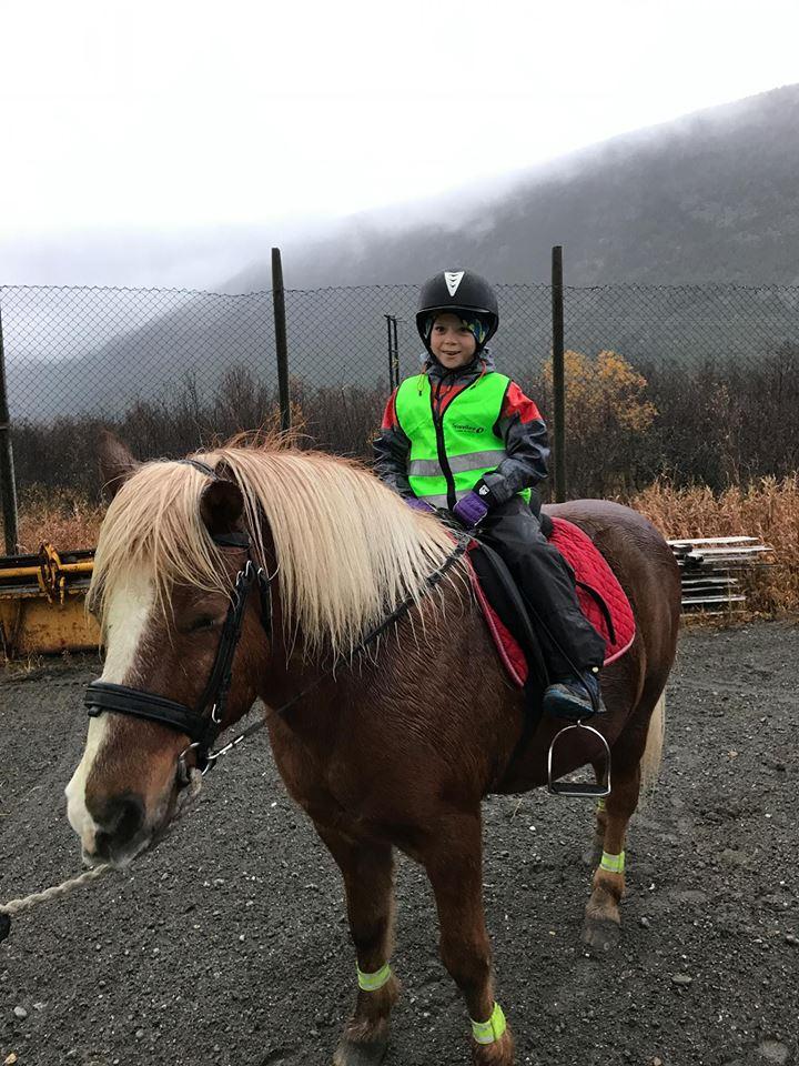 Riding og sykling (ta med sykkel)