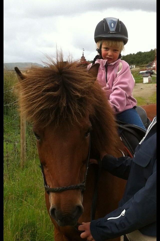 Hest/sykkel i Grov