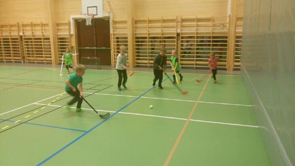 Idrettsskulen ønsker velkommen til Innebandy i Utgard!